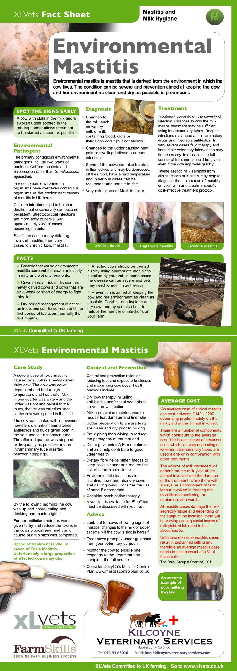 xlvets_environmental_mastitis